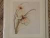 Lanarte - Orchid - 34788 - takto to bude vyzerať hotové